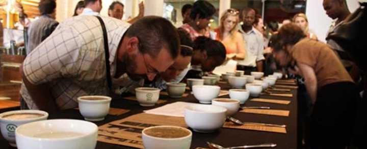 Kaffesmagning og Tesmagning