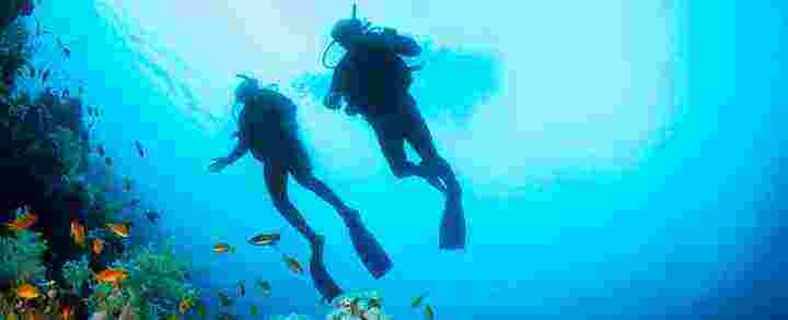 Se alt dykning