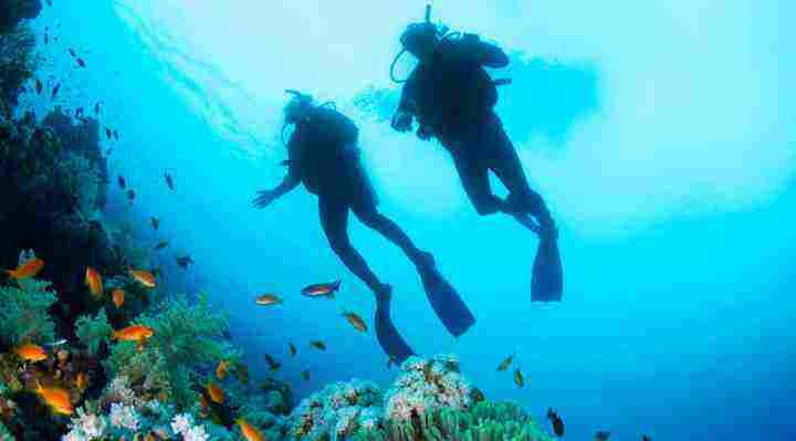 Dykning, prøvedyk og dykkerkursus