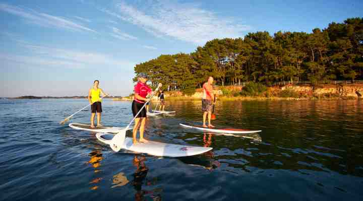 SUP surfing og stand up paddle