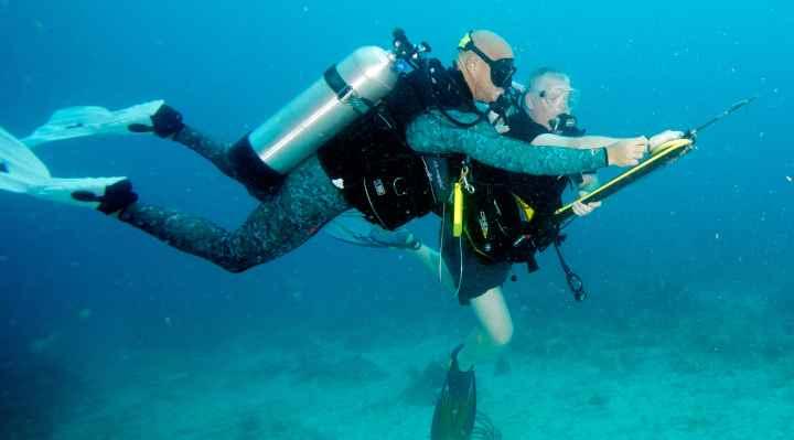 Undervandsjagt