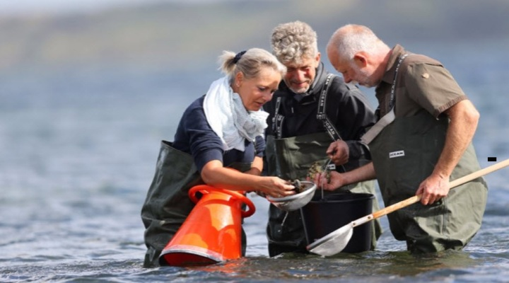 Østers og seafoodsafari i Thyborøn