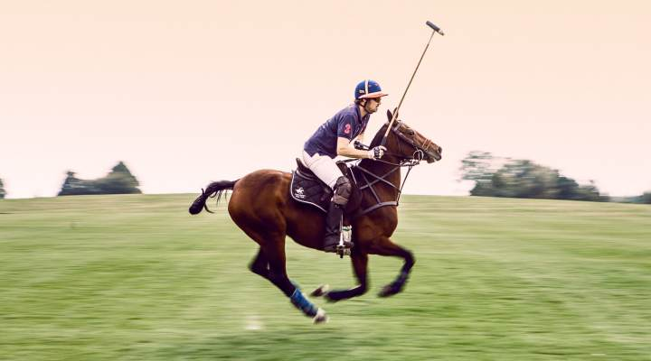 Copenhagen Polo Club i Nivå