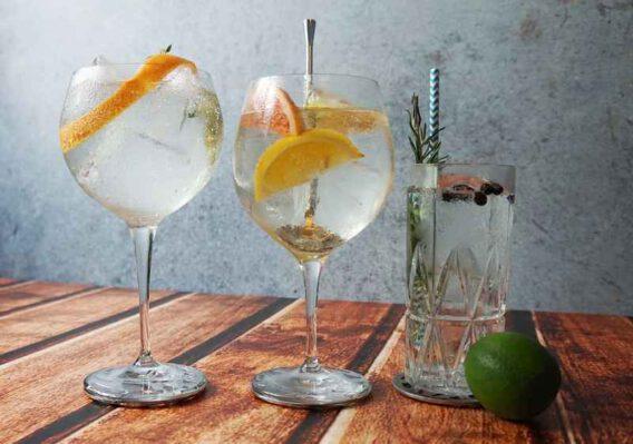 Gin smagning af Gin fizz og Gin Tonic