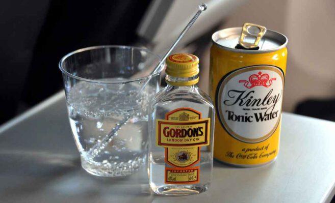 Gin tonic ginsmagning